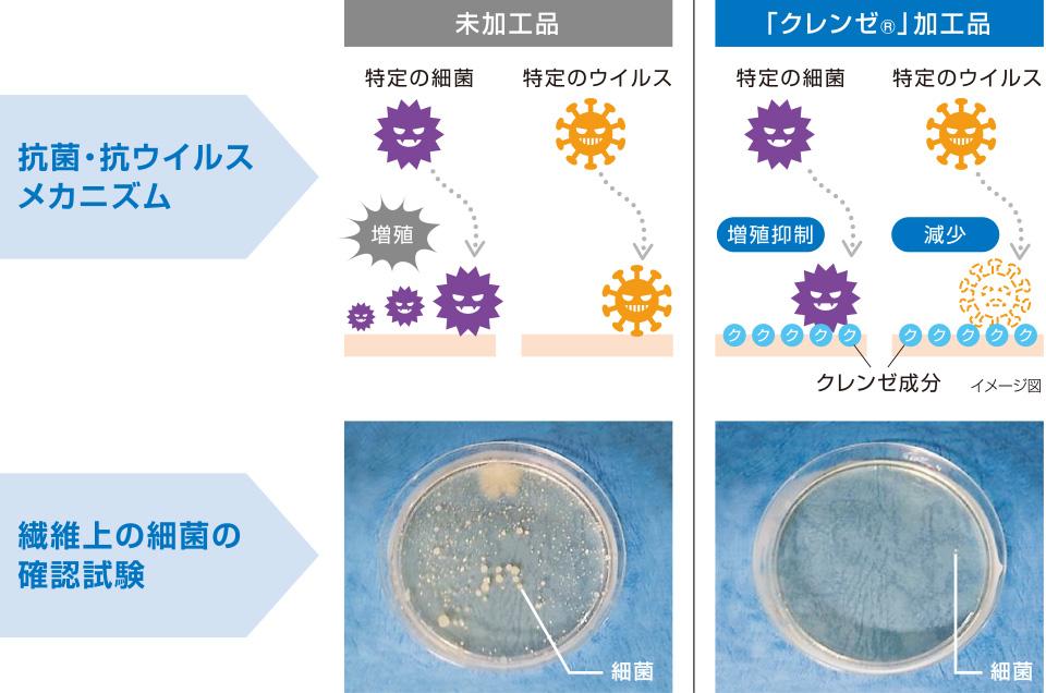 CLEANSE クレンゼ 抗菌 抗ウイルス メカニズム