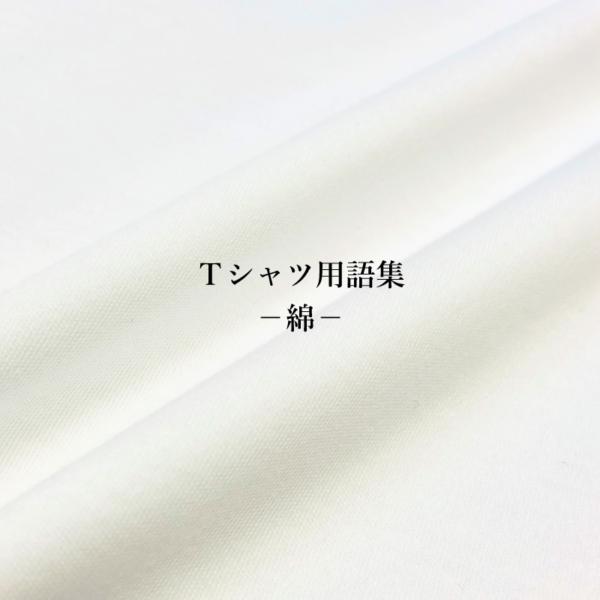 ファッション用語集-Tシャツの綿の種類-