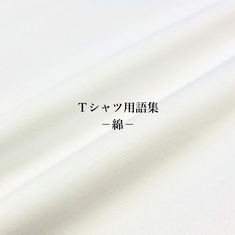 ファッション用語集 綿の種類